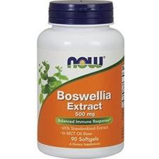 Boswellia Extract 500mg – 90 kapsułek wegetariańskich suplement diety